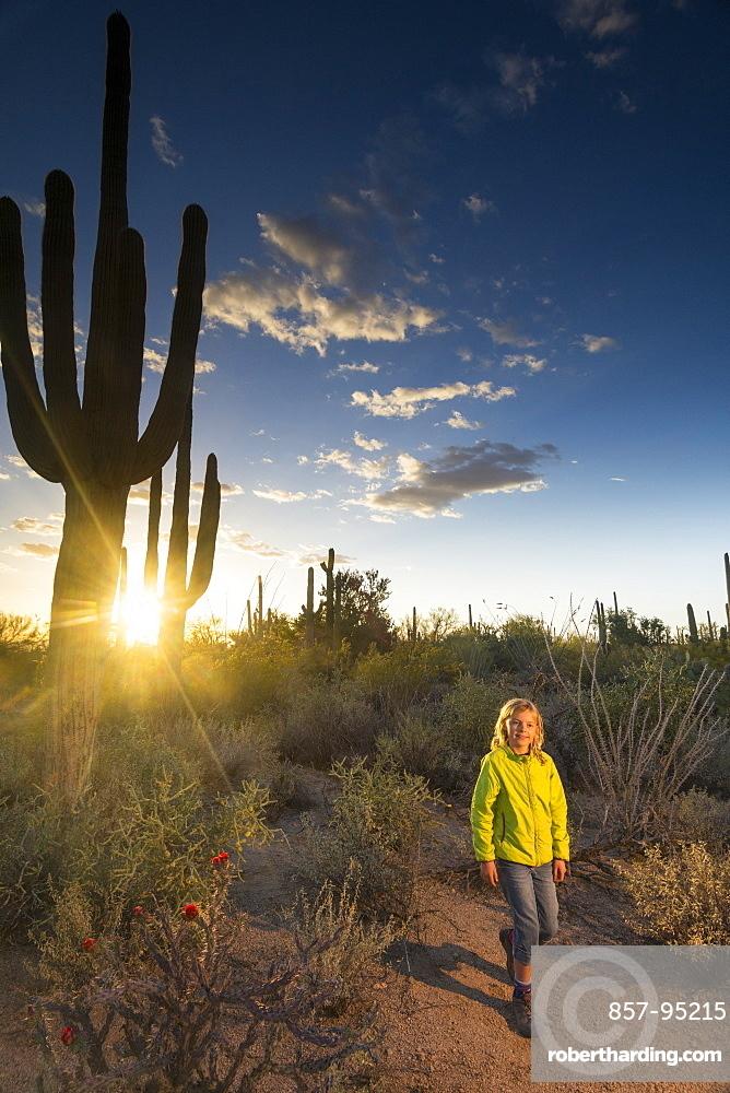 Girl hiking past cacti in Tucson Mountain County Park, Tucson, Arizona
