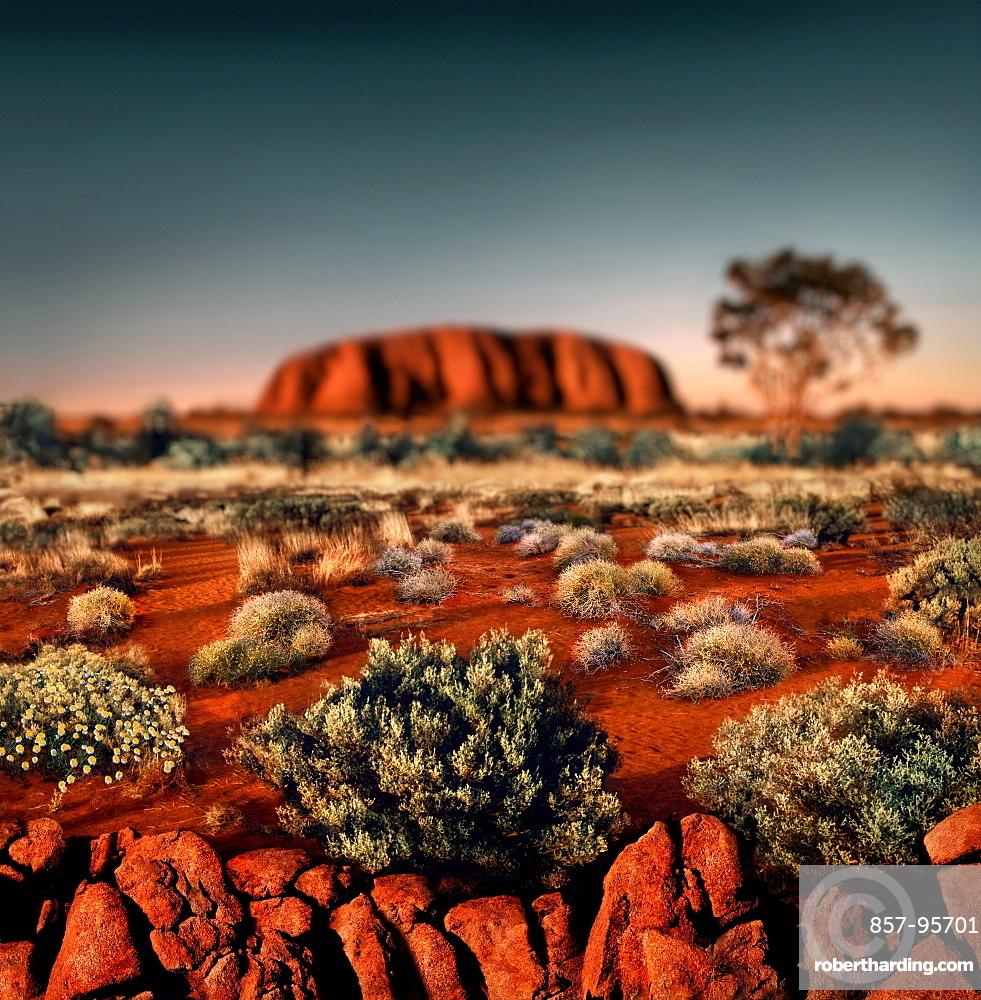 Landscape with Ayers Rock (Uluru) at sunset, Uluru, Northern Territory, Australia
