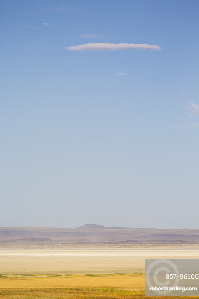 A dry desert landscape of yellows and tans below a light blue sky with one thin cloud Summer Lake, Oregon, USA