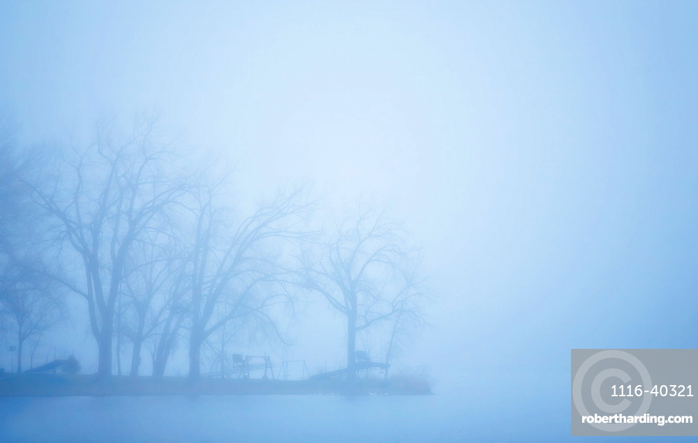 Lake And Trees In Mist