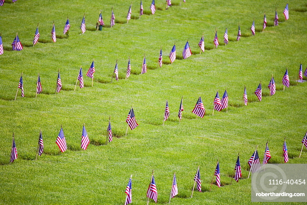 American Flags On Soldiers' Graves