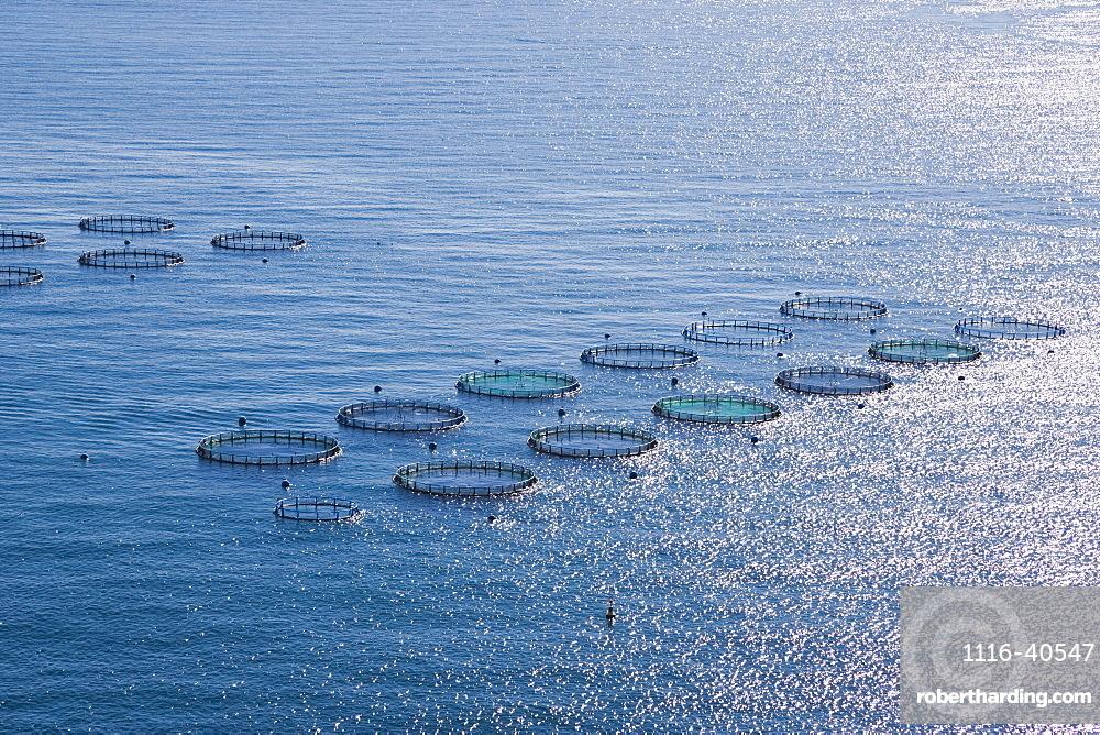 Aquaculture Fish Farm, Costa Tropical, Granada, Spain