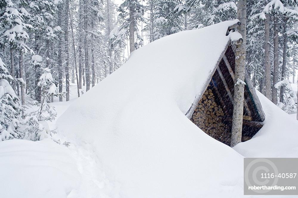 Snow-Covered Wood Shed, Wallawa Mountains, Oregon, Usa