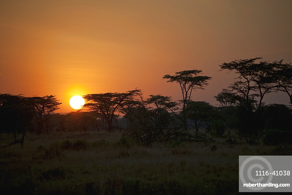 Sunrise On An African Landscape