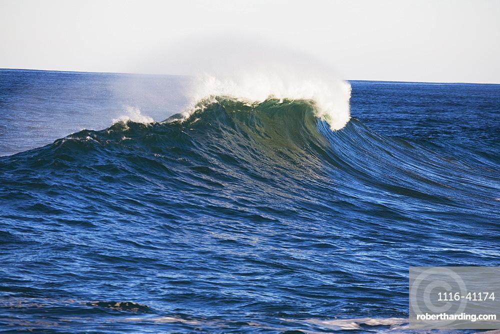 Wave, Oregon Coast, Oregon, Usa