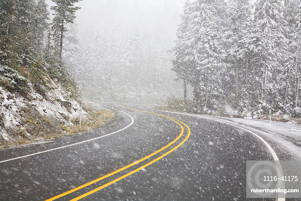 Road During A Snowfall