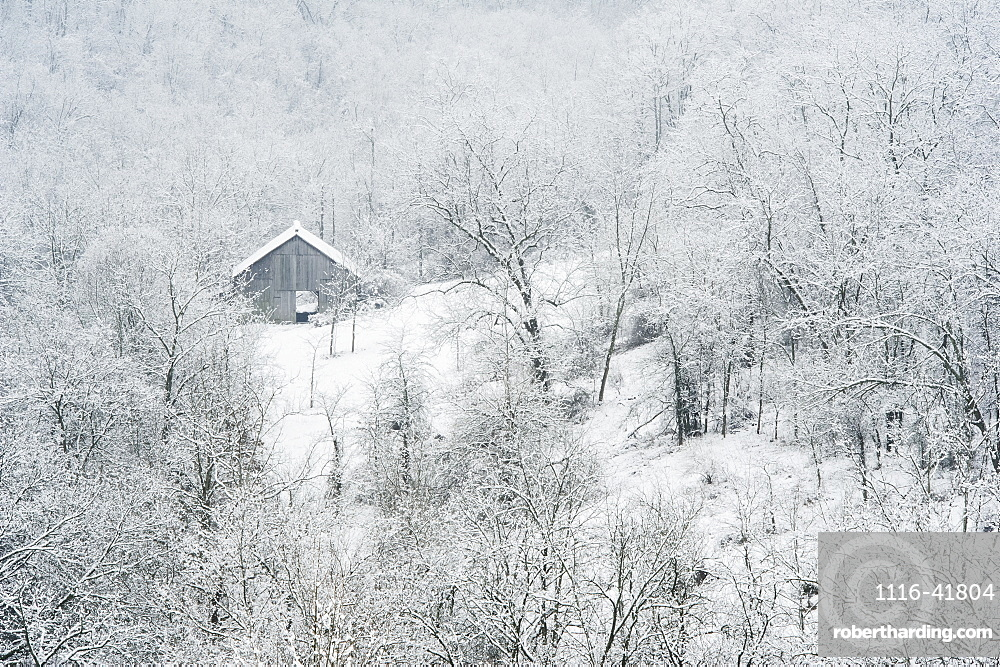 A barn surrounded by trees and snow in winter, Ohio, united states of america
