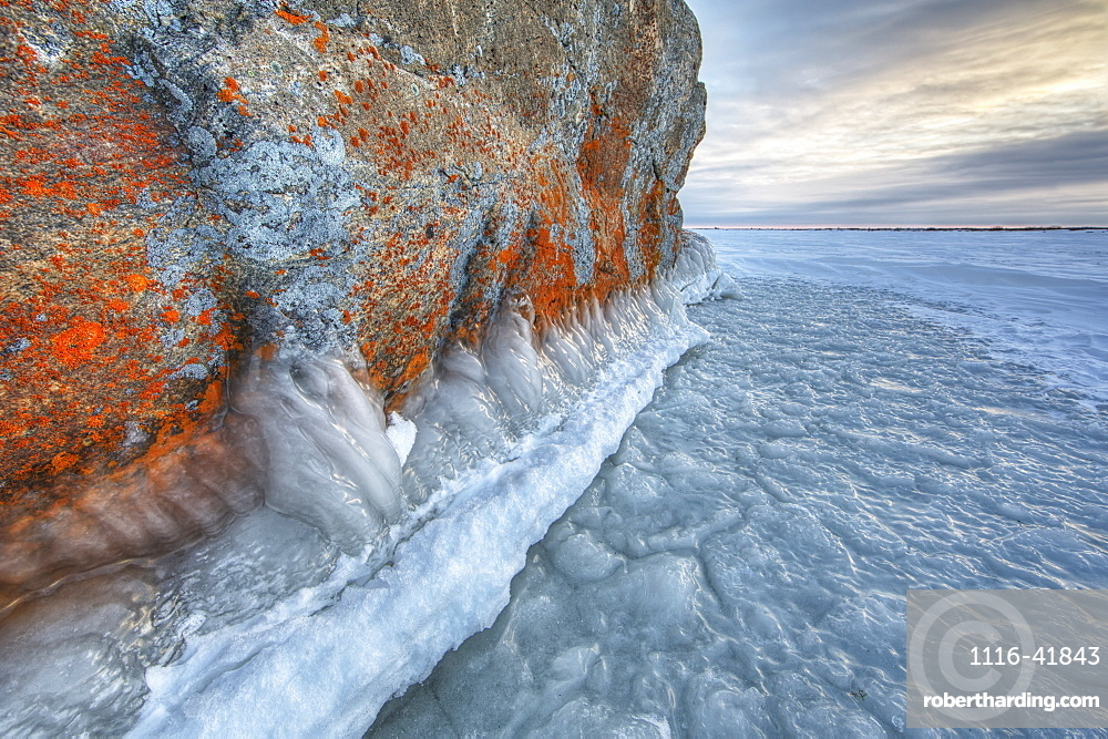 Large lichen covered rock in a frozen lake situated on the flats beside hudson's bay, Manitoba canada
