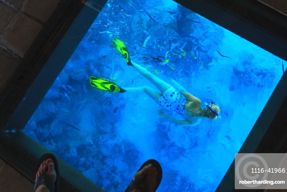 Snorkeler under the glass floor in a room of bora bora nui resort and spa, Bora bora island society islands french polynesia south pacific