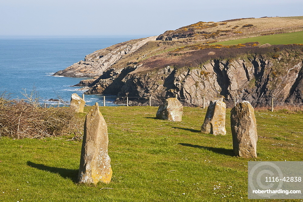 Stone Circle West Of Trefin On Pembrokeshire Coast Path, Pembrokeshire, Wales