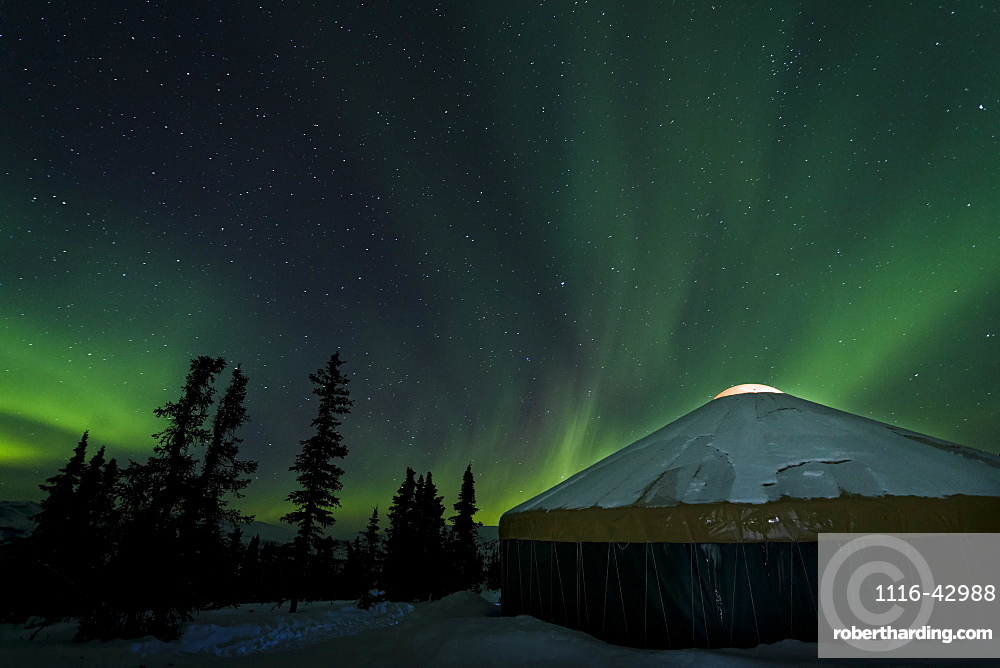 The Bright Neon Green Aurora Illuminates Above A Yurt In The Boreal Forest, Chena River State Recreation Area, Fairbanks, Alaska, United States Of America