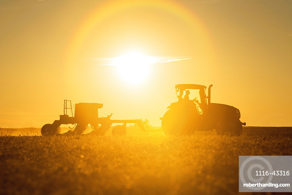 Farmer Planting Cover Crop Over Soybean Stubble In Kent County, Rock Hall, Maryland, United States Of America