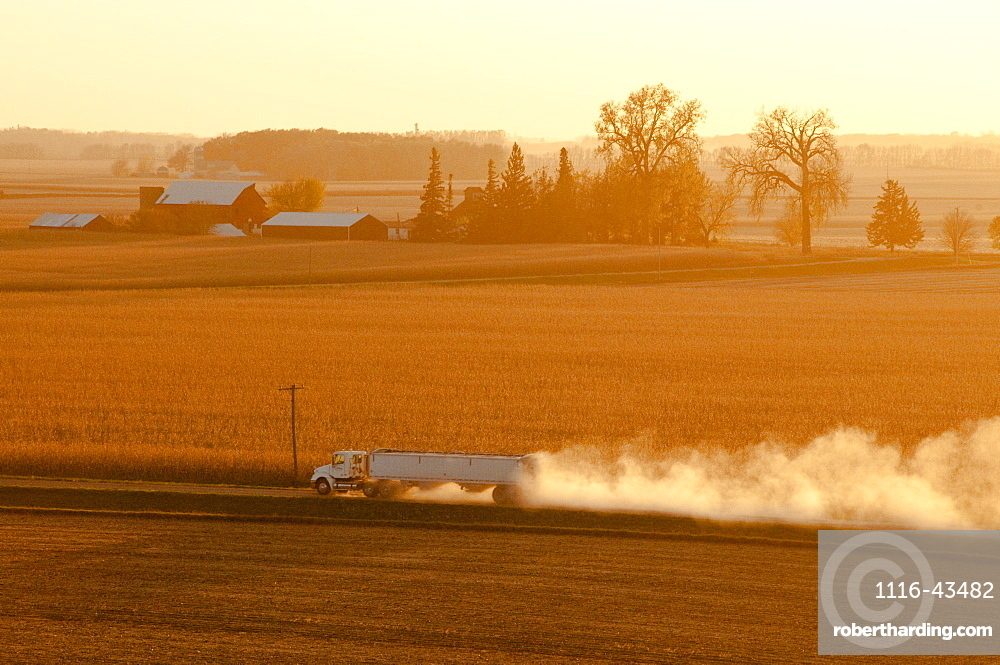 A Grain Truck Hauls Newly Harvested Grain Along A Dusty Country Road In Late Afternoon Light, Near Blue Earth, Minnesota, United States Of America