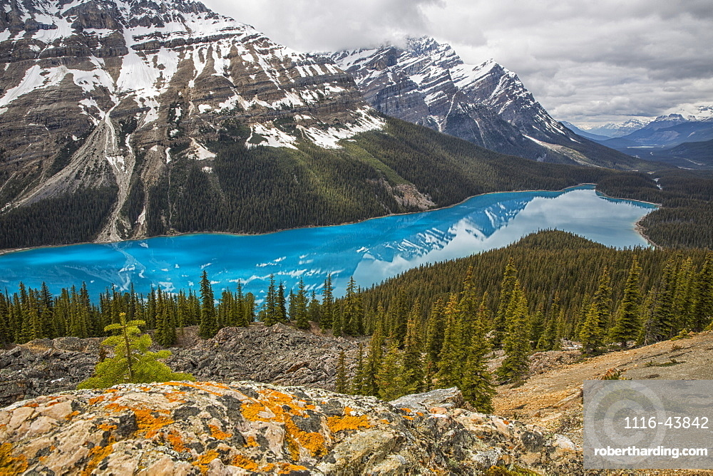 The Aquamarine Waters Of Peyto Lake, Banff National Park, Alberta, Canada