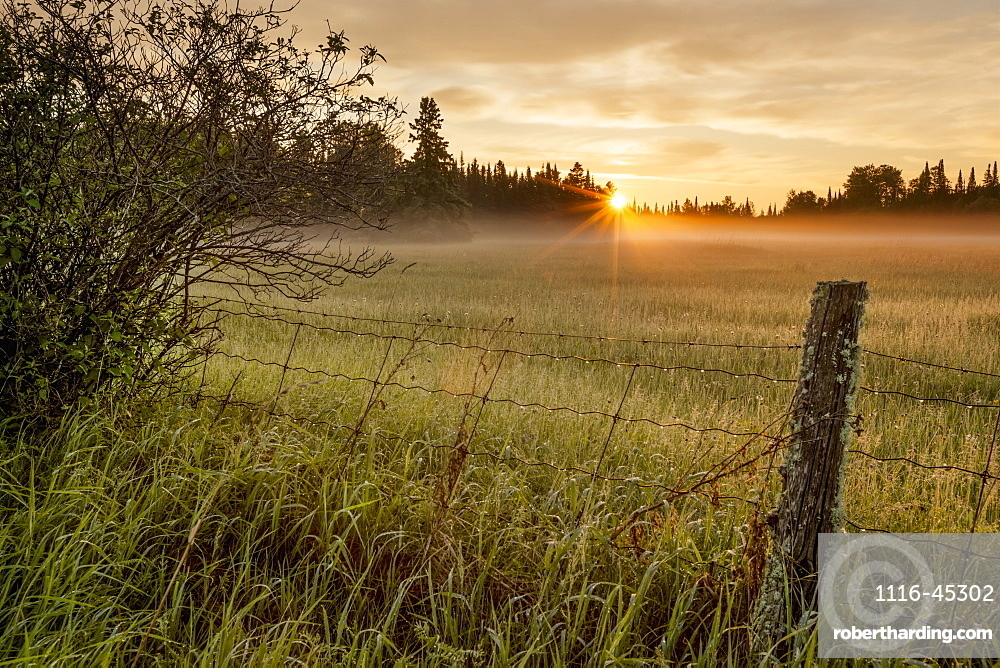 Sunrise Over Dewy Grass Field, Thunder Bay, Ontario, Canada