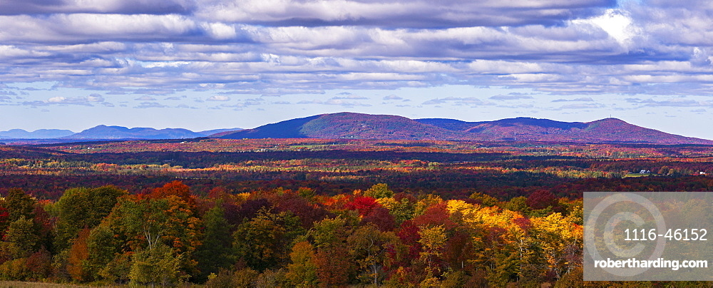 Mountain Range In Autumn Colours With Autumn Coloured Forest In The Foreground, West Bolton, Quebec, Canada