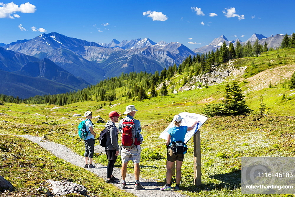 A Group Of Hikers Viewing A Interpretive Sign Along A Meadow Trail With Mountain Range In The Distance And Blue Sky And Clouds, Banff, Alberta, Canada
