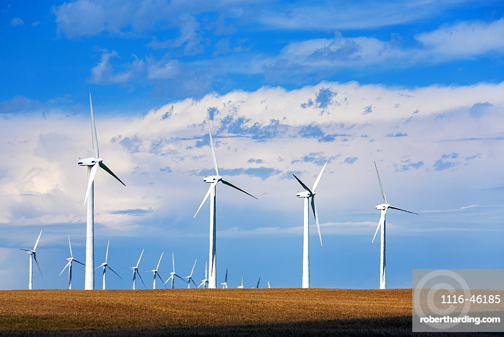 Large Wind Mills In A Golden Wheat Field With Blue Sky And Clouds, North Of Glenwood, Alberta, Canada