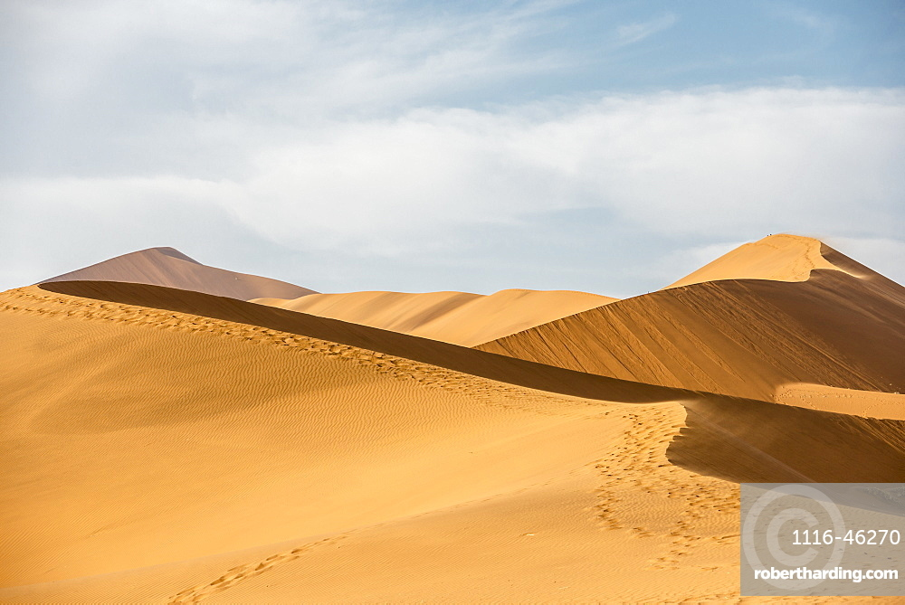 Endless Sand Waves And Human Foot Traces On A Sand Dune Of Namib Desert, Namibia