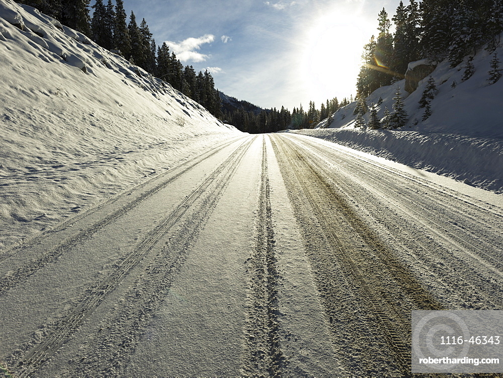 Snow Covered Road With Tire Tracks In Jasper National Park, Alberta, Canada