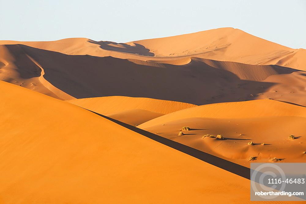 Sunrise Light Illuminate The Large, Red Sand Dunes In Sossusvlei Which Is Part Of The Namib Desert, Namibia