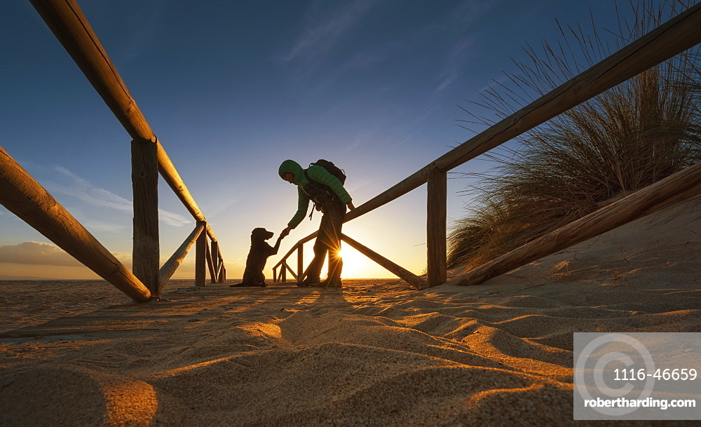 A Hiker With Backpack Stoops To Shake A Paw With A Dog On A Sand Path Leading To The Beach, Tarifa, Cadiz, Andalusia, Spain