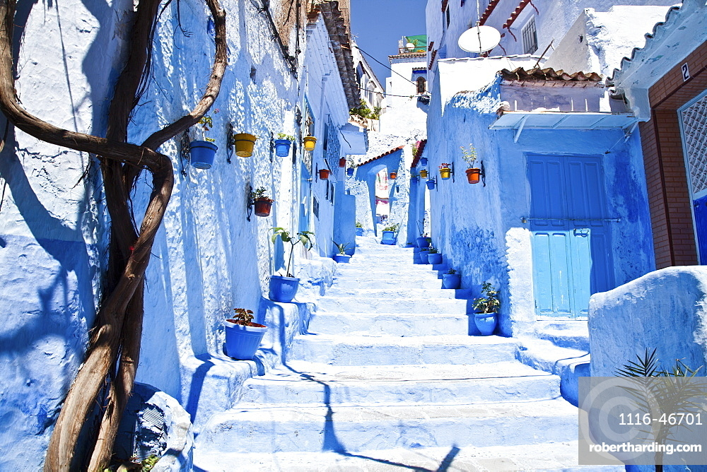 Steps Leading Up Between Rows Of Whitewash And Blue Painted Houses, Chefchaouen, Morocco