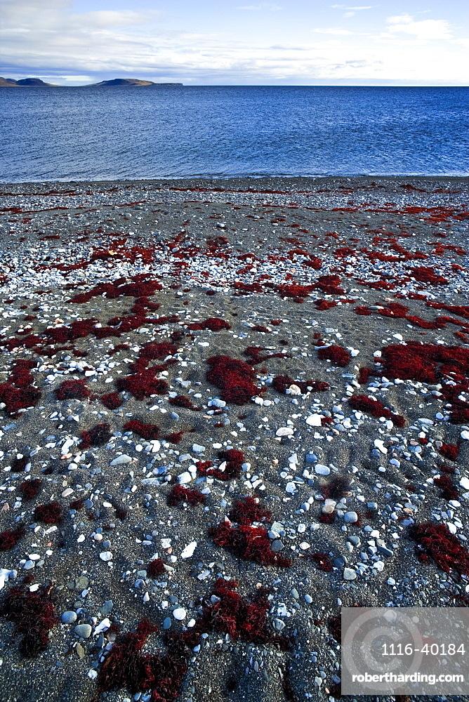 Seashore On The Arctic Ocean