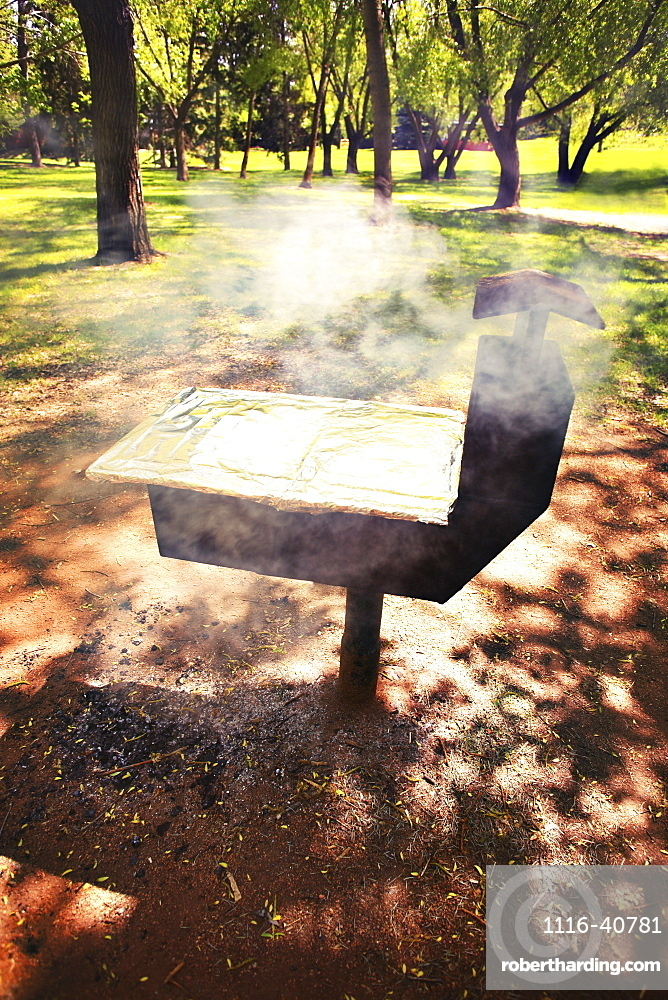 Barbecue In Park, Cooking On A Barbecue