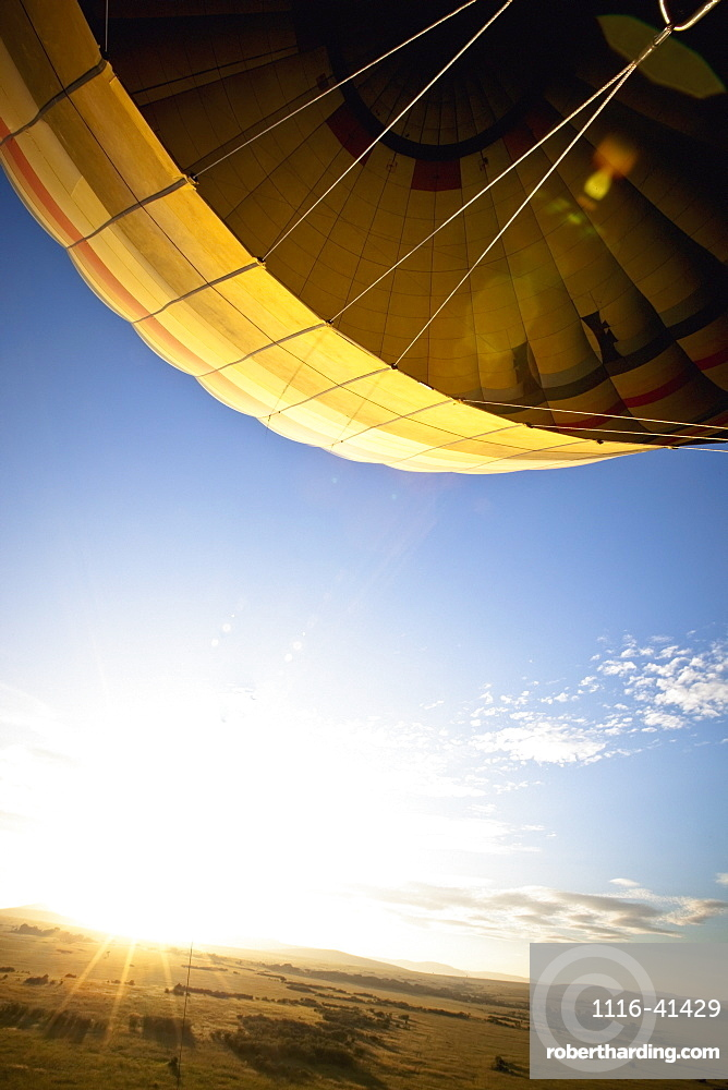A Hot Air Balloon Lifting Into The Sky, Kenya