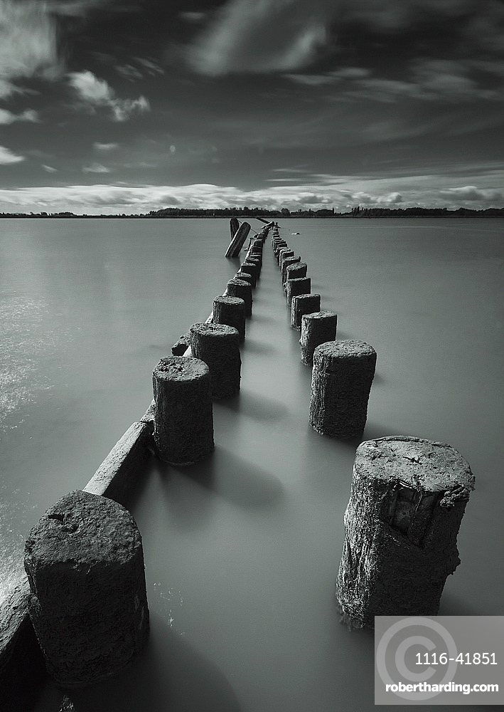 Wooden posts leading out into the river, Vancouver british columbia canada