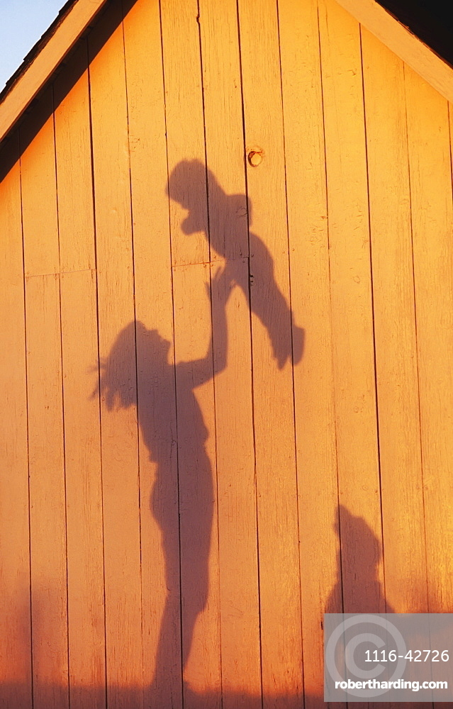 Agriculture - Silhouette on the side of a barn in late afternoon light of a farm woman, and mother, tossing her young child into the air while their dog watches / Northwest Missouri, USA.