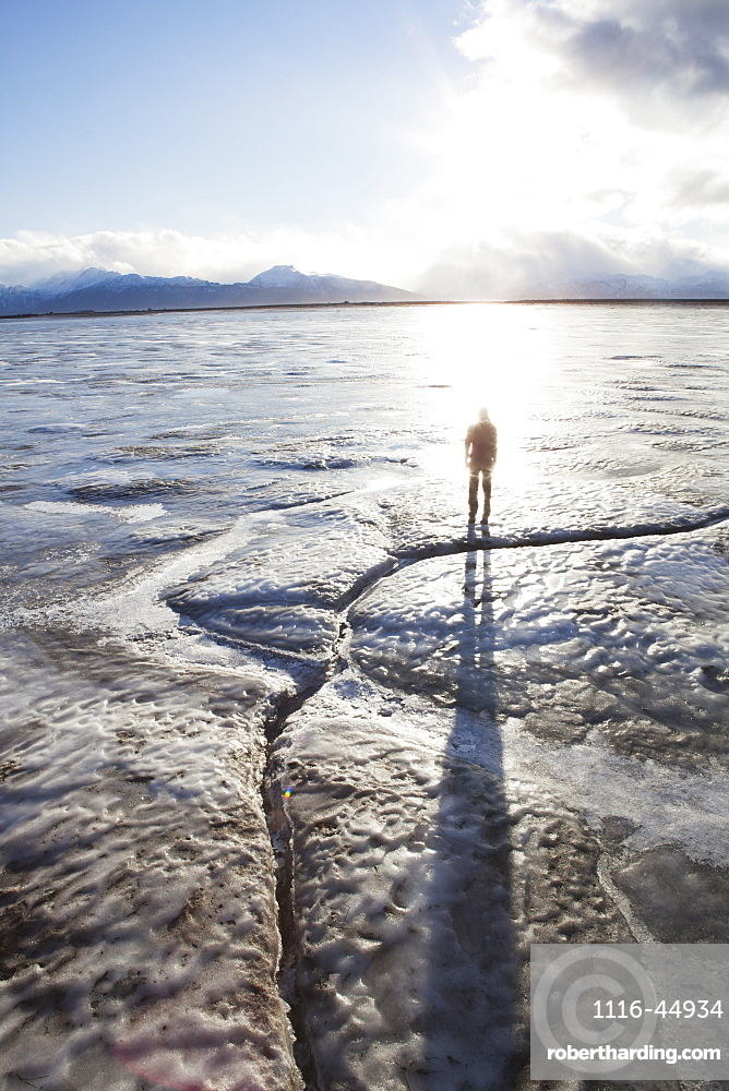 Person Silhouetted On The Beach, Homer Spit, Southcentral Alaska