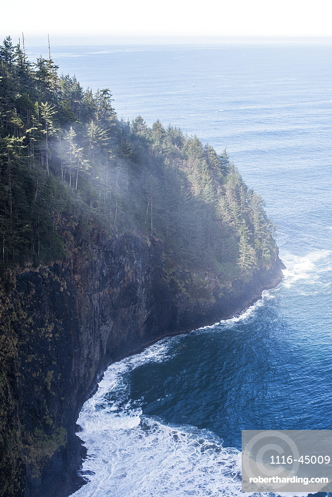 Looking Out On The Vast Pacific Ocean From Cape Lookout, Netarts, Oregon, United States Of America