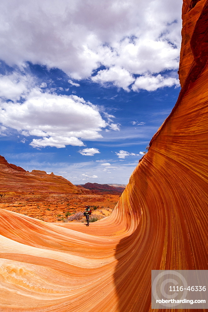 View Of A Hiker In The Sandstone Formation Known As The Wave, Vermillion Cliffs, Arizona, United States Of America