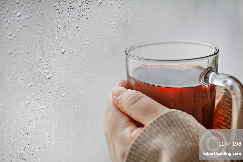 Human hands holding a mug of tea next to a window with condensation on it