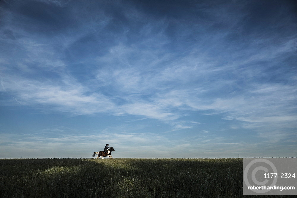 Cowboy riding horse in rural field under blue sky and clouds
