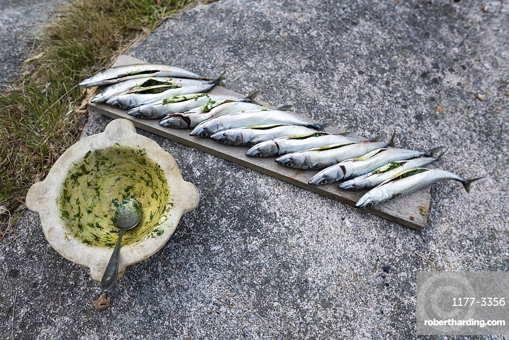 Stuffed fish ready to grill on wood plank on concrete
