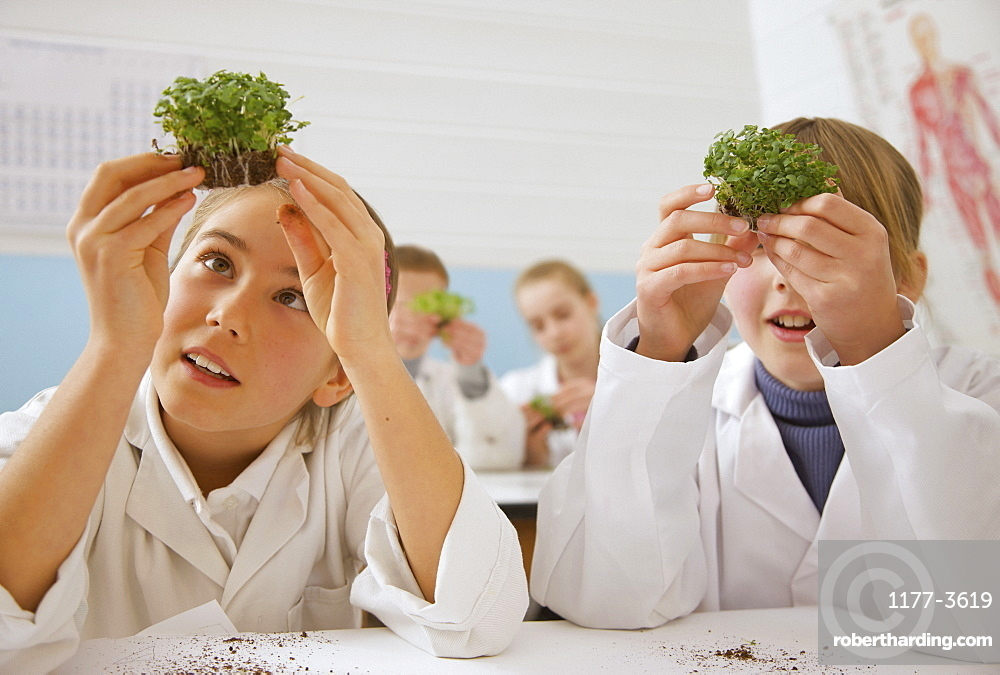 Curious junior high school students examining plants in science laboratory