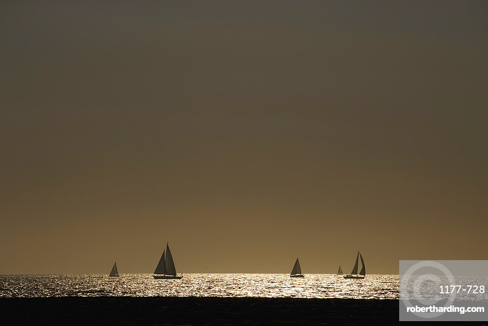 Yachts sailing in the sea