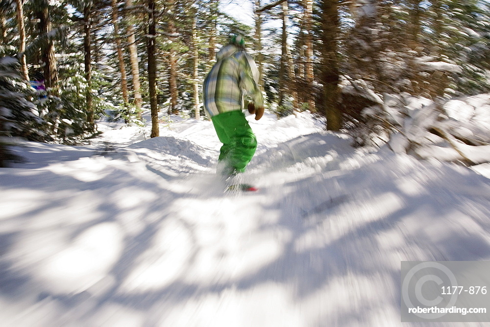 Rear view of a boy snowboarding between trees, stratton, vermont, usa