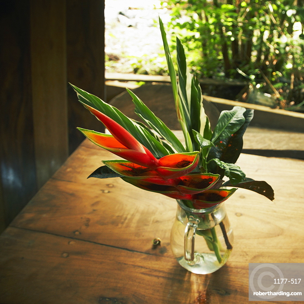 Fresh bird of paradise and leaves in flower vase on table