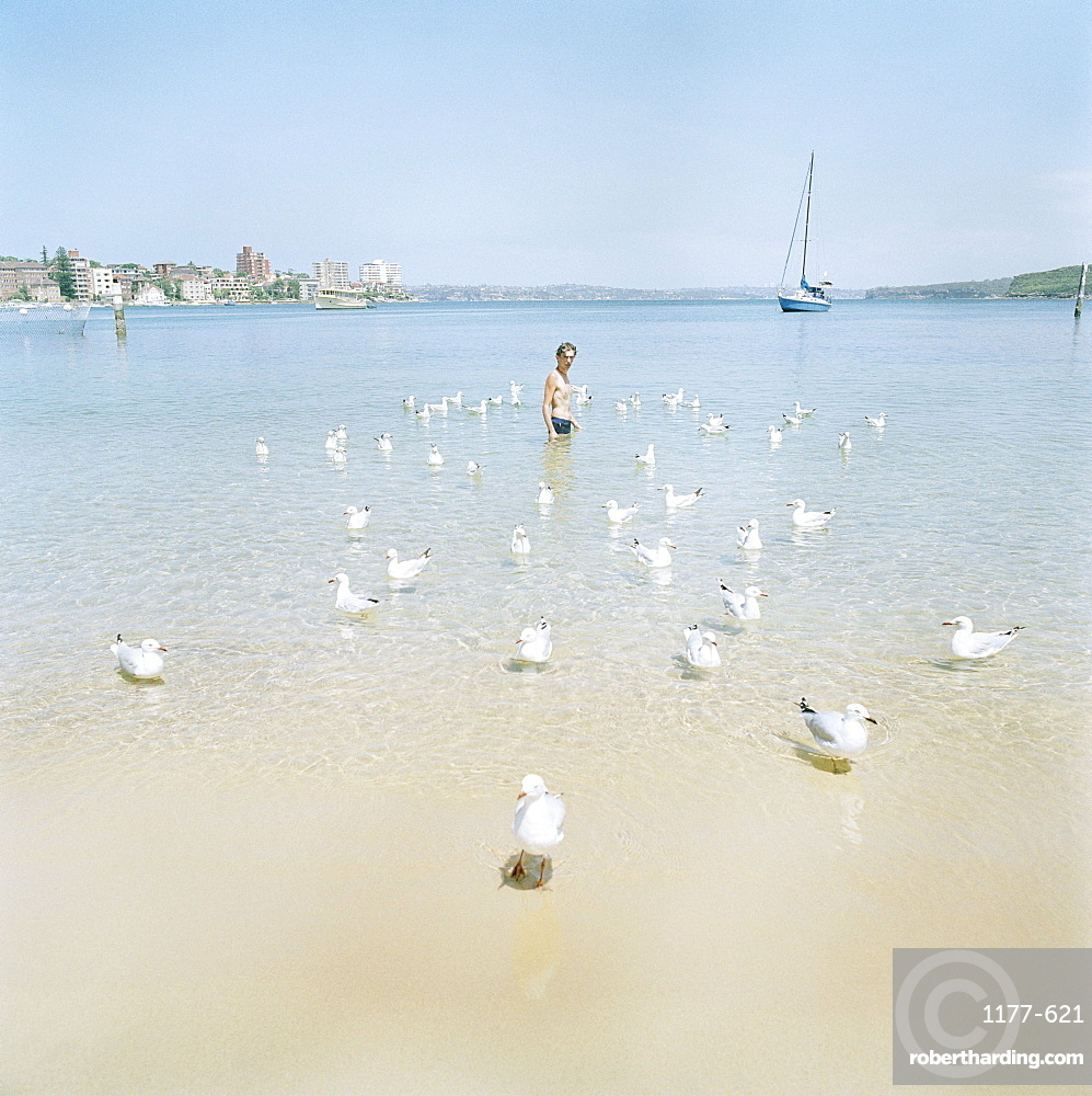 A man standing amidst seagulls in a bay