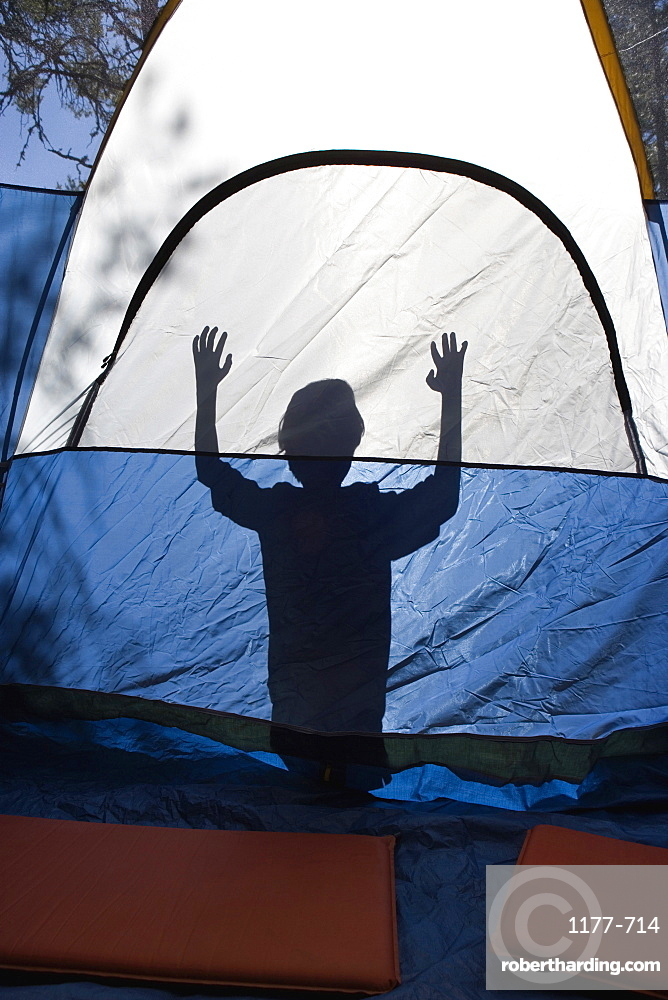 Shadow of a young boy behind a tent