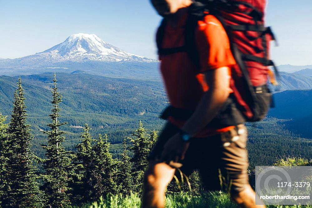 The national forest and Goat Rocks Wilderness, Cascade Range in Washington, Skamania County, Washington, USA