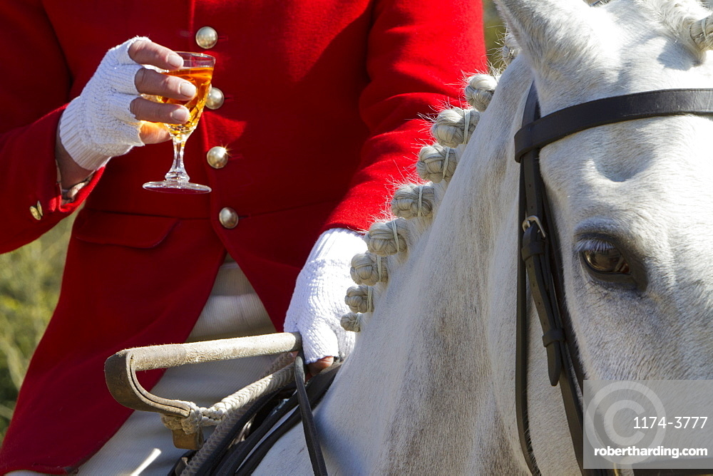 A Master of Foxhounds having a drink at a hunt meet, Master of Foxhounds, England
