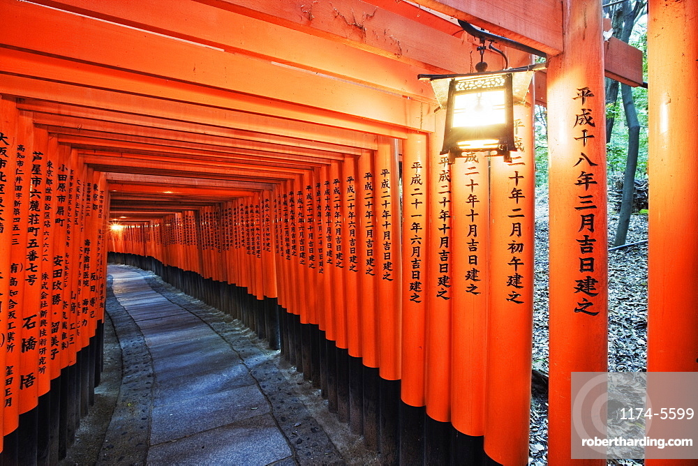 Orange Posts with Asian Text, Kyoto, Japan