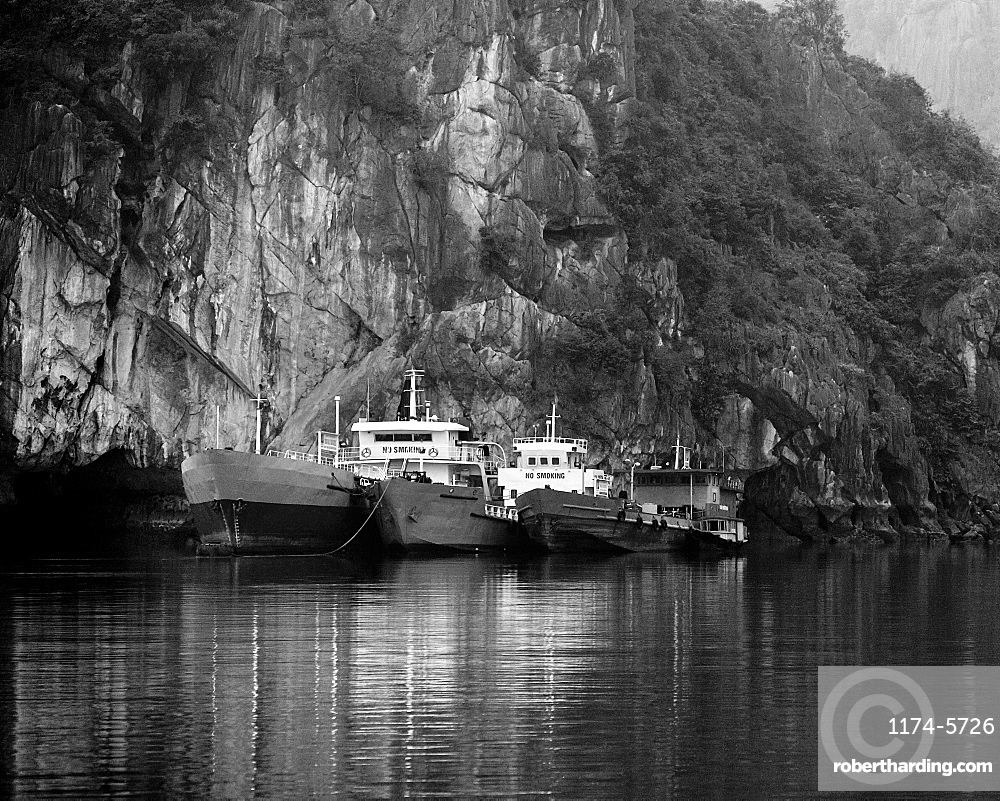 Boats Docked by a Cliff, Halong Bay, Quang Ninh, Vietnam