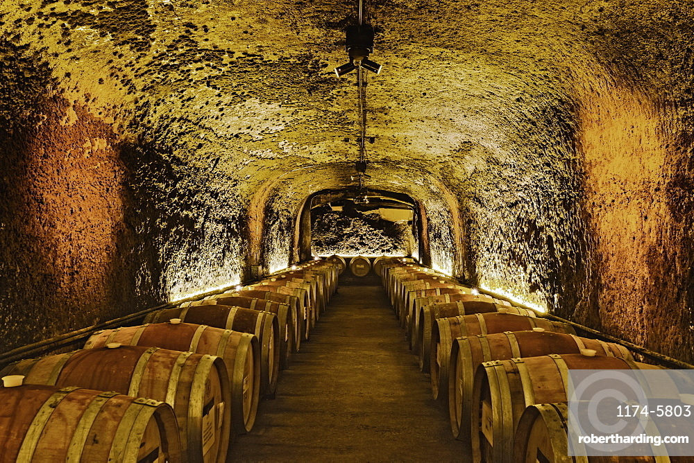 Wine barrels in cave cellar, NAPA, California, USA