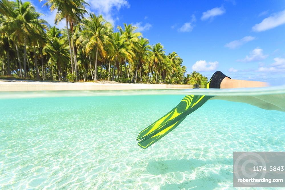 Diver's fins in tropical water, Bora Bora, French Polynesia, Bora Bora, Bora Bora, French Polynesia